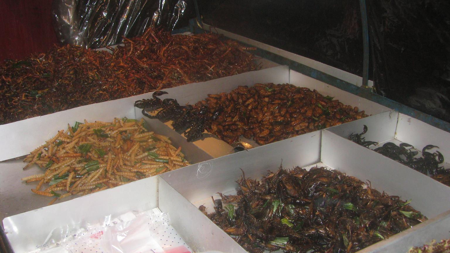 eating insects scorpions and cockroaches in bangkok