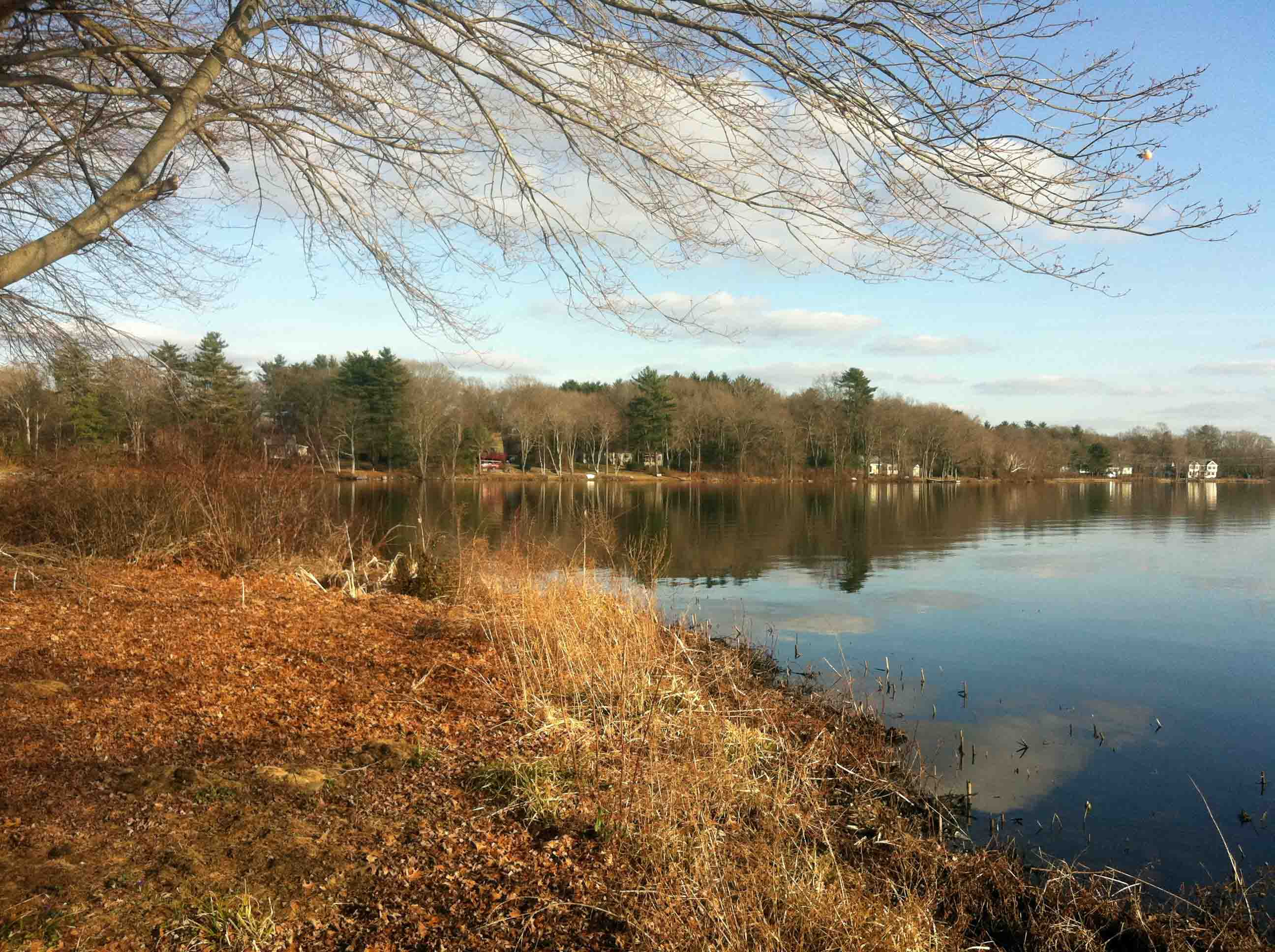 Golf, Fishing & Kids on St Patrick's Day in Norton