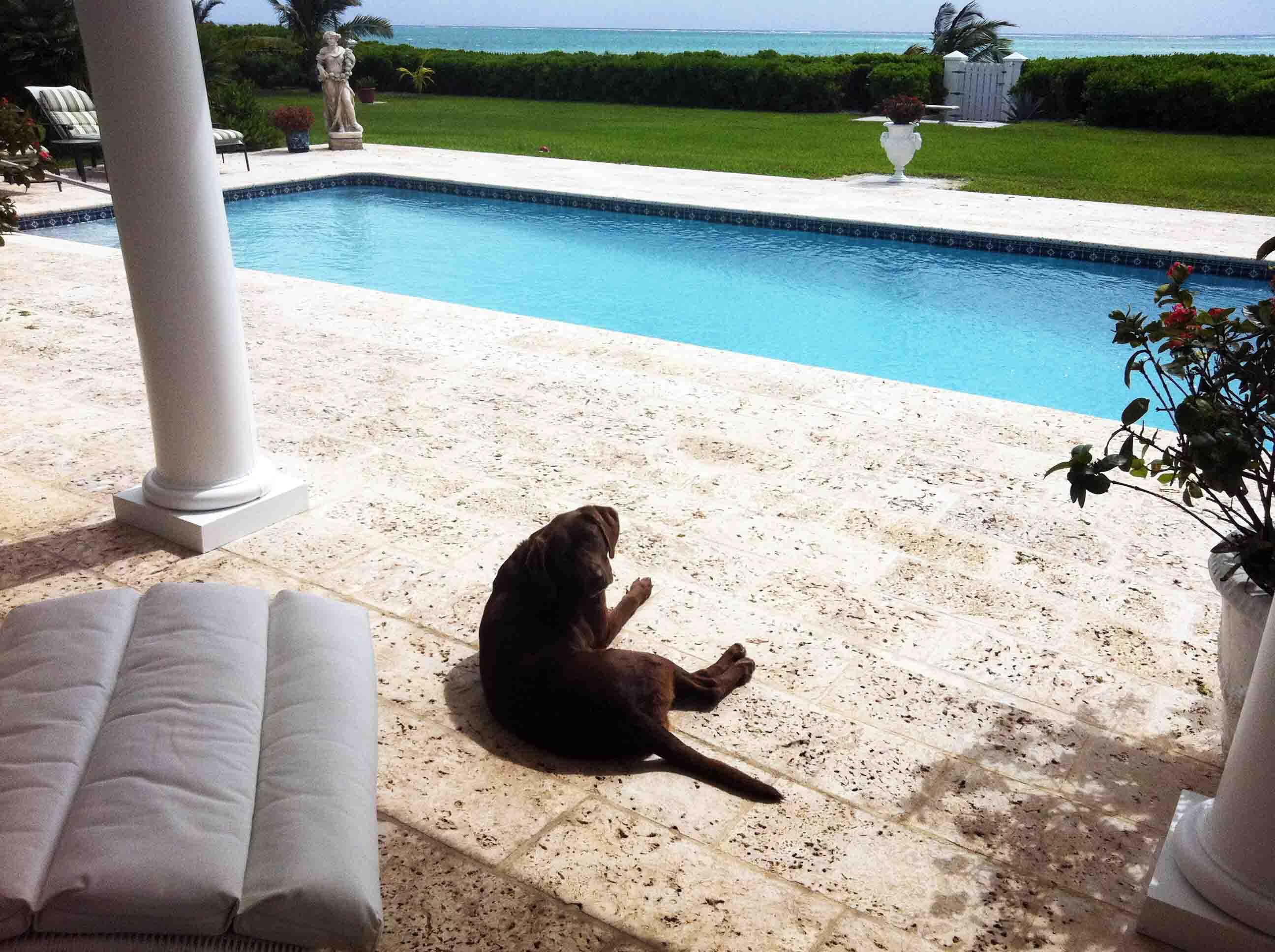 Art Of The Layover Freeport Bahamas Edition Stop Having A Boring Life