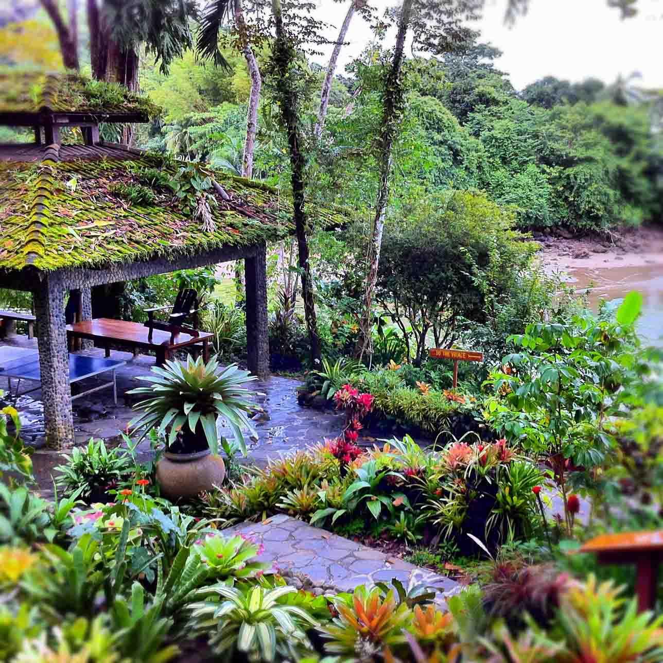 Osa Peninsula Costa Rica Hotels: Greetings From Drake Bay, Costa Rica Aka Paradise