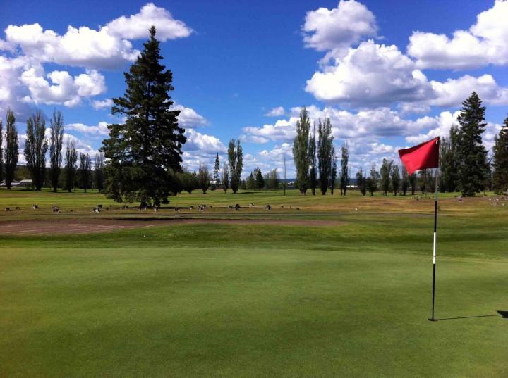 golfing_prince_george_bc