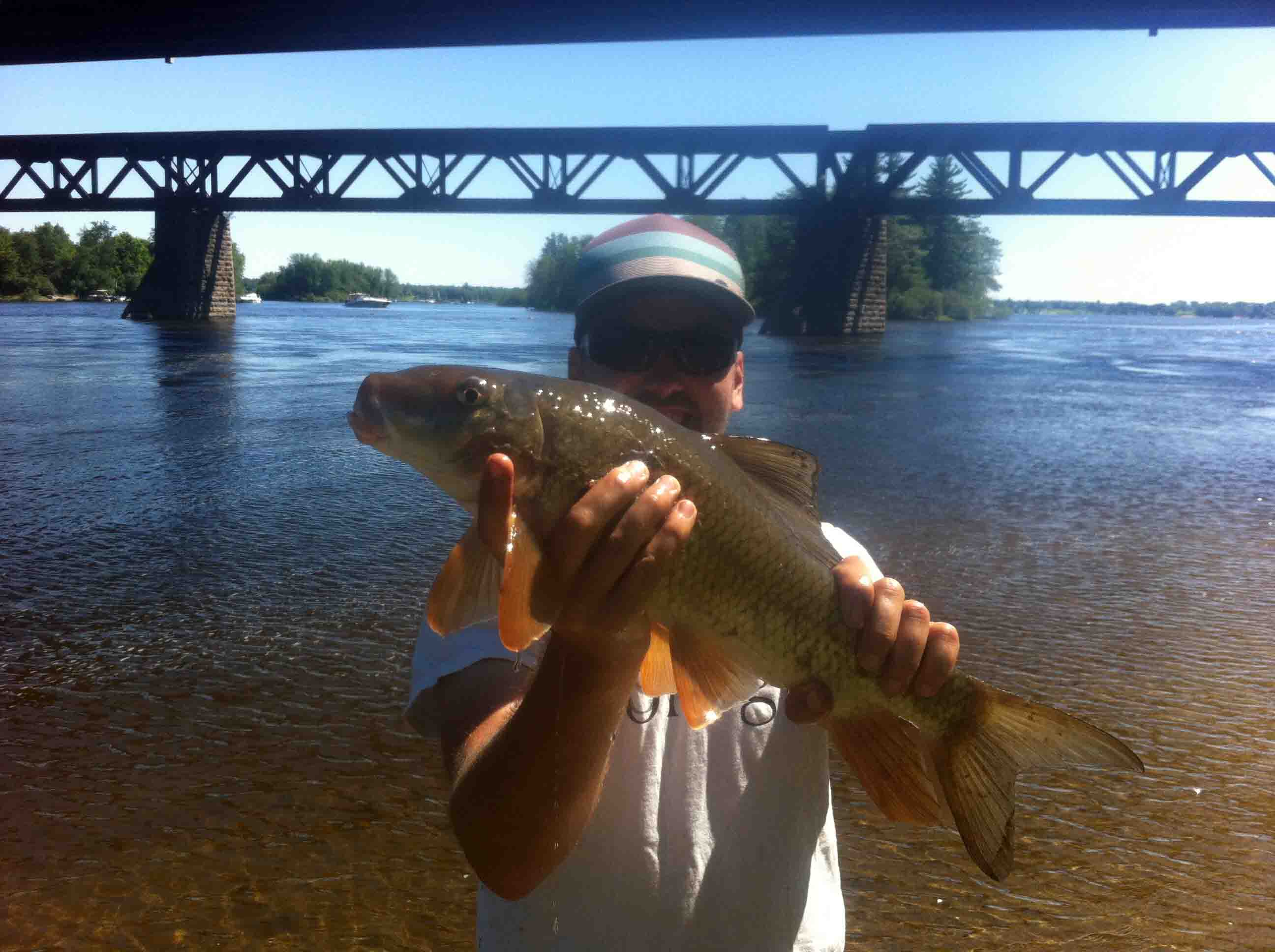 Serious catfish fishing on the rouge river quebec for Fishing in quebec