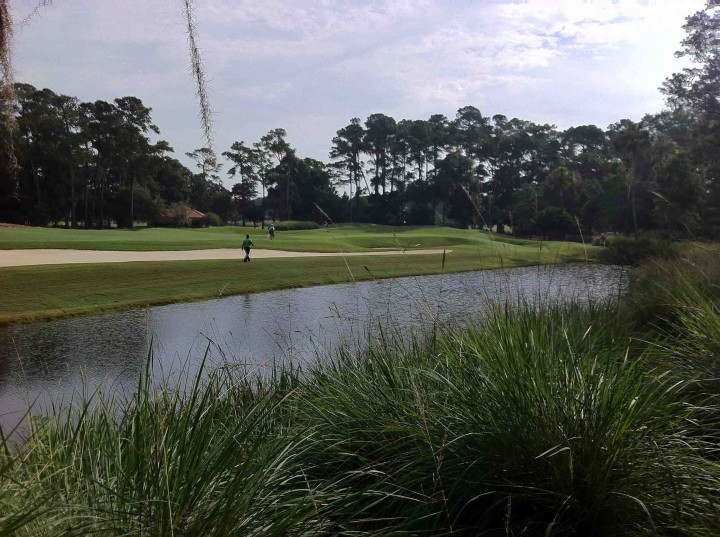 water_tpc_sawgrass_stadium_course