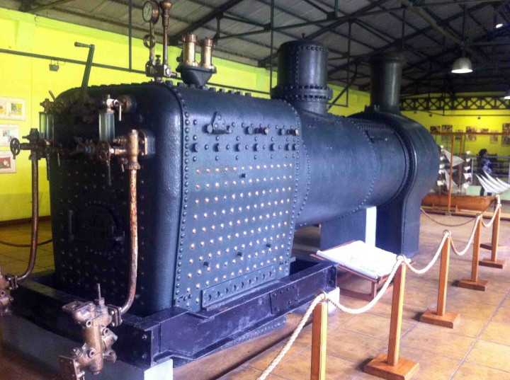 bois_cheri_locomotive_tea_plant