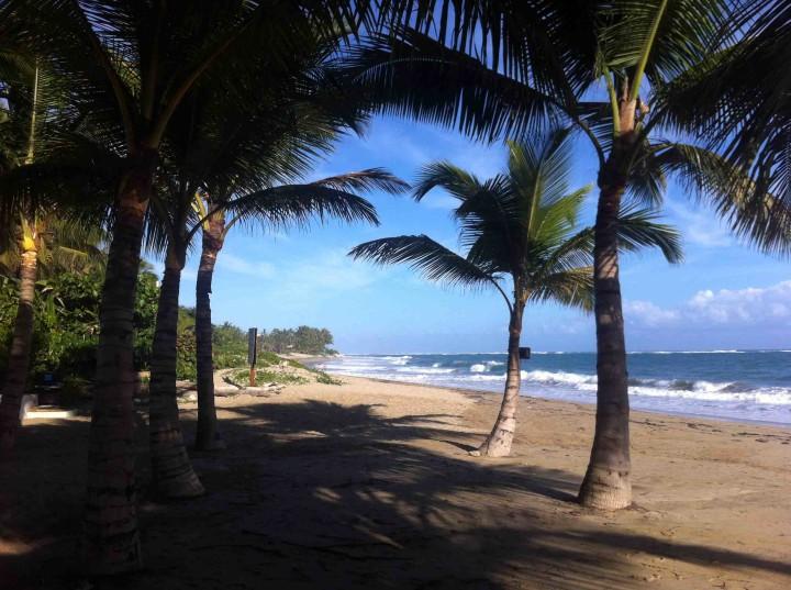 cabarete_beach_dominican_republic