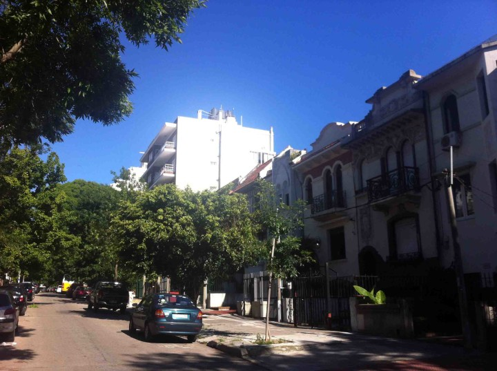 montevideo_tree_lined_streets
