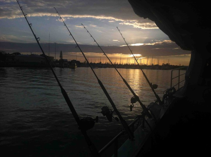 deep_sea_fishing_sunshine_coast
