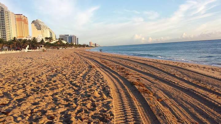 goat_beach_fort_lauderdale