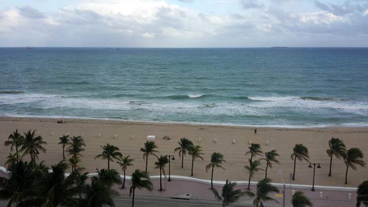 goat_room_view_fort_lauderdale