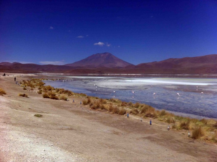 lagoons_wildlife_andes