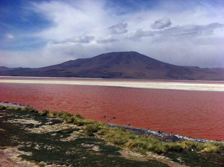 red_lagoon_bolivia