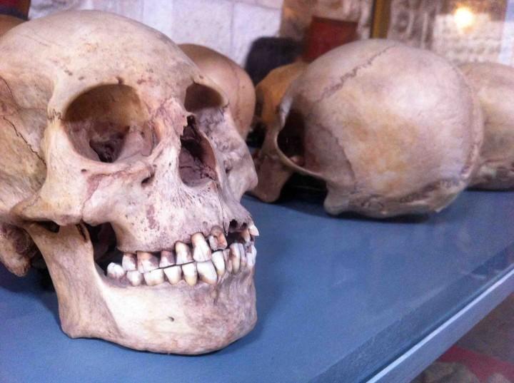 skulls_casa_de_la_moneda