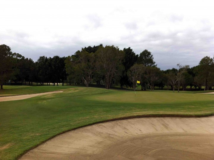 guarded_greens_racv_royal_pines_golf_course_gold_coast