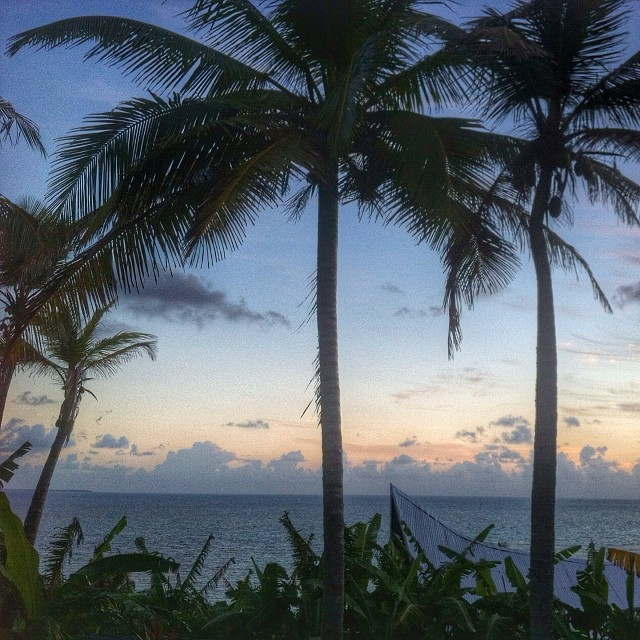 sunrise_sally_peachy_corn_island