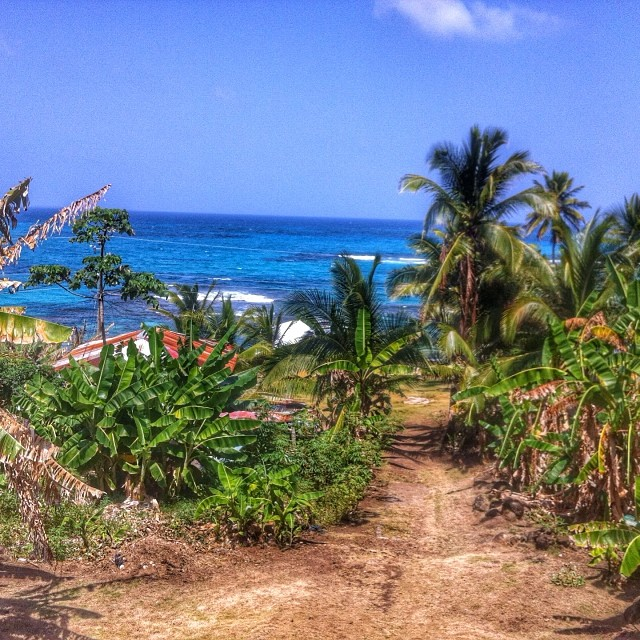 view_dentist_office_caribbean