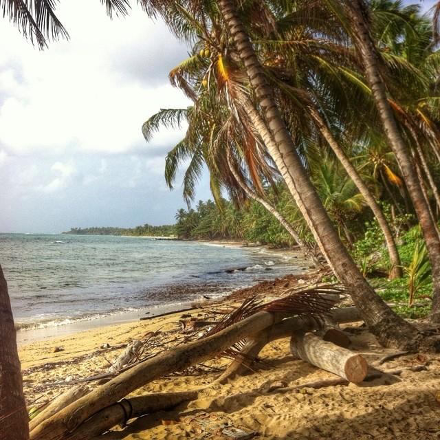 beach_life_little_corn_island