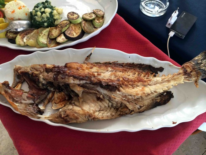 grilled_fish_katic_petrovac_montenegro