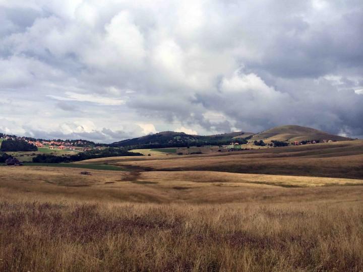 roaming_grassy_hills_zlatibor_serbia