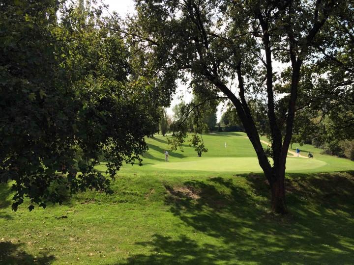 chipping_through_trees_golf_club_bologna