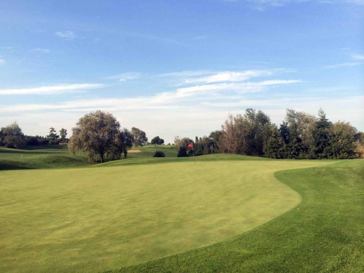kidney_green_golf_club_le_fonti_bologna_italy
