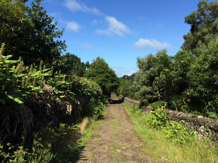 old_stone_walls_batalha_golf_course_azores_view