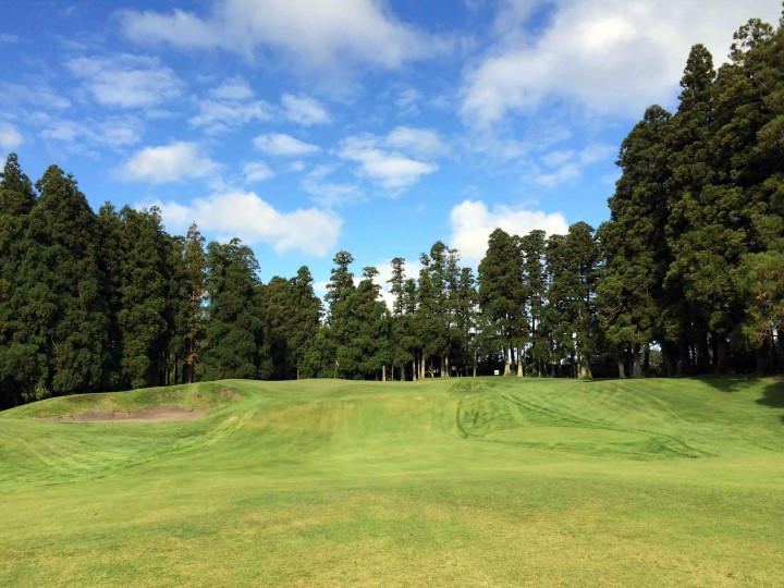 raised_green_furnas_golf_course