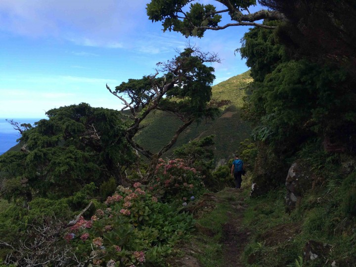 beautiful_hiking_sao_jorge_azores