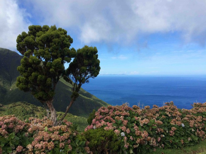endless_views_hiking_sao_jorge_azores