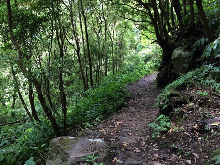 faial_da_terra_hiking