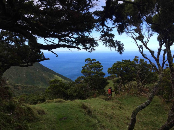 hiking_sao_jorge_azores_beautiful