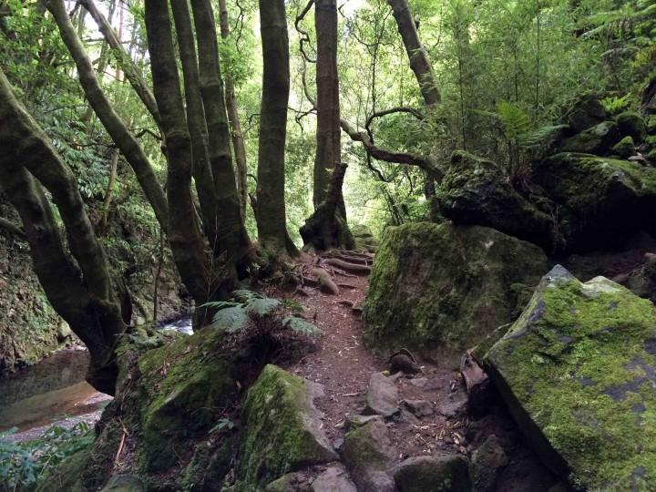 hiking_trail_salto_do_prego