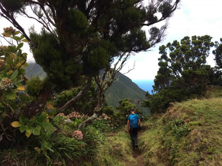 landscape_hiking_sao_jorge_azores