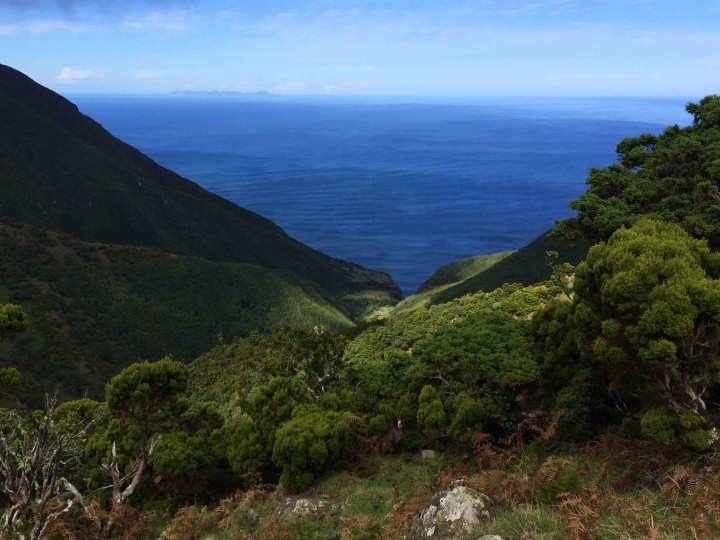 views_hiking_sao_jorge_azores