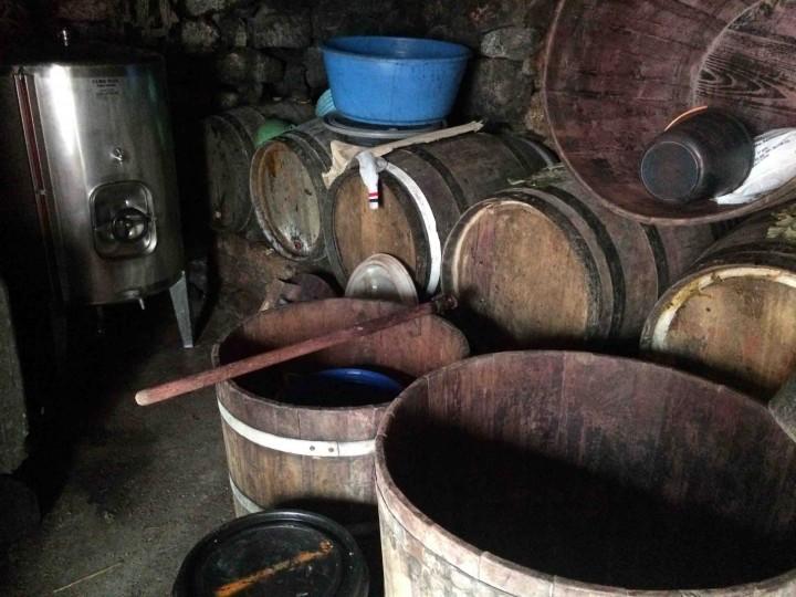 wine_maker_sao_jorge_azores