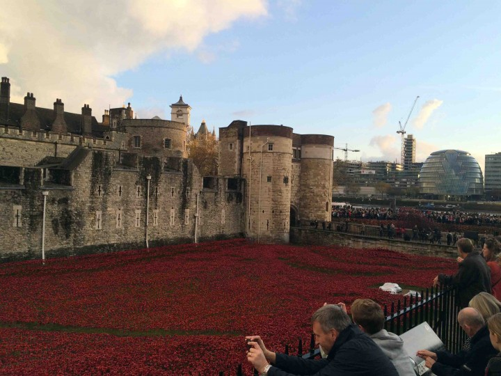 sea_of_poppies_tower_of_london