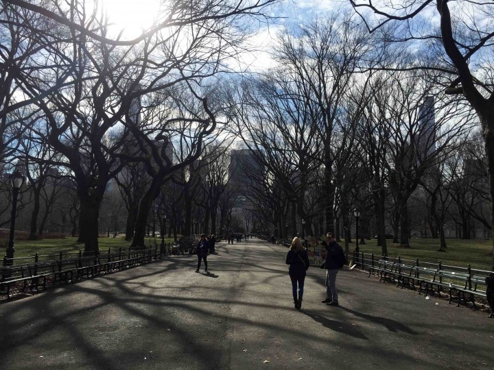 beautiful_central_park_new_york_city