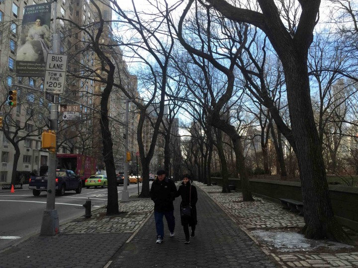 outside_central_park_new_york_city