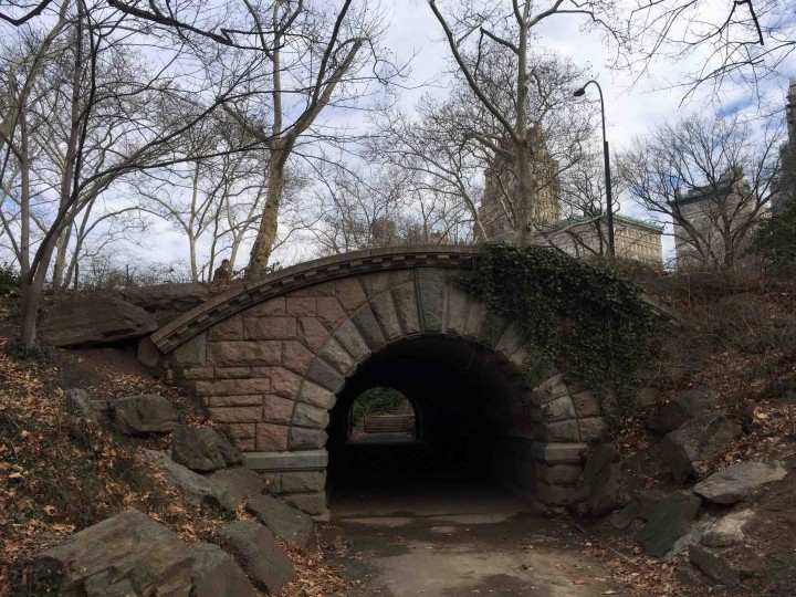pictureque_central_park_new_york_city