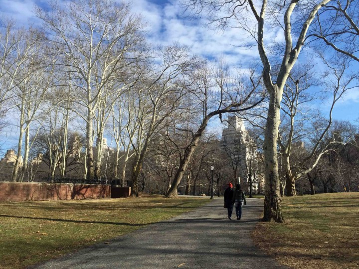 walking_central_park_new_york_city