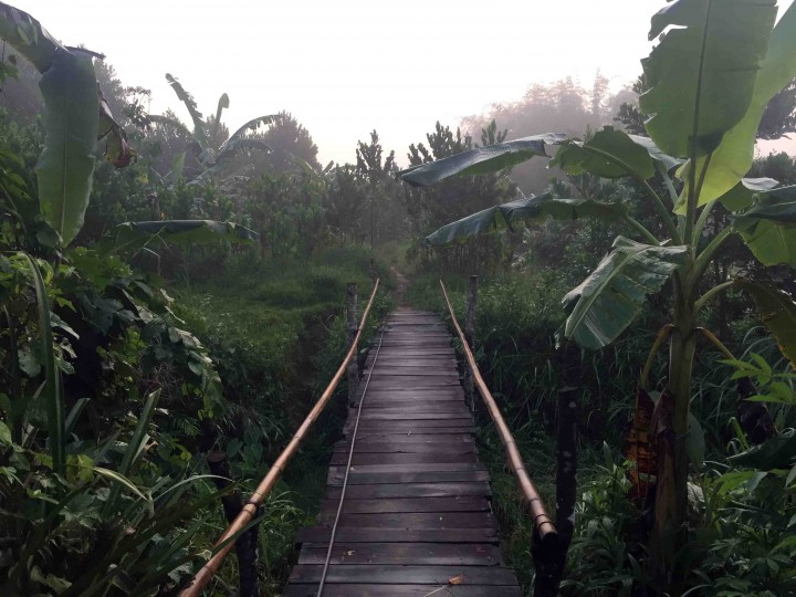 bamboo_bridge_bho_hoong_vietnam