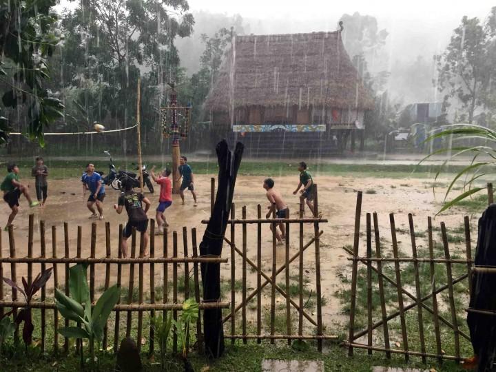 volleyball_bho_hoong_vietnam