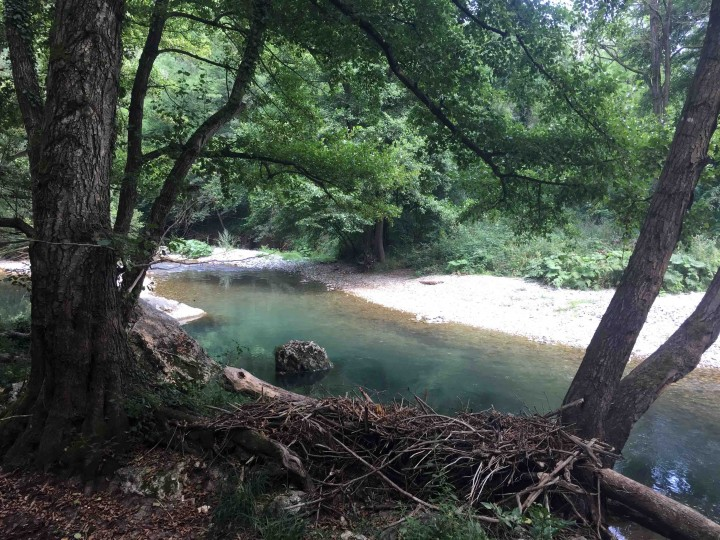 gradac_river_serbia