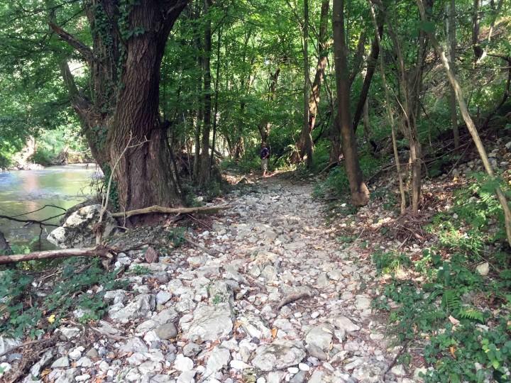 serbian_hiking_trail_gradac_river