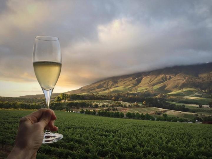 winetasting_stellenbosch